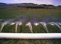 NRCSWY02024 - Wyoming (6913)(NRCS Photo Gallery).tif
