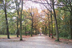 Nachtegalen Park - Nachtegalen Park