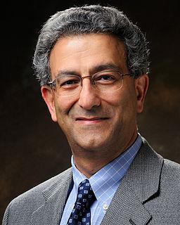 Nader Engheta Iranian-American engineer