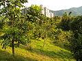 Nangang Park South Hill 20121215b.jpg