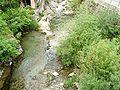 Nasino-torrente pennavaira2.jpg
