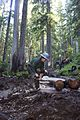 National Public Lands Day 2014 at Mount Rainier National Park (068), Narada.jpg
