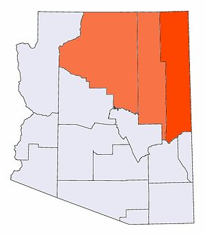 Native american majority and plurality Arizona...