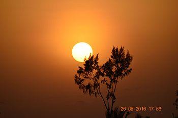 Nature sun set.jpg