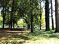Natyra në Parkun e qytetit - Pejë.jpg