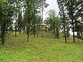 Naujoji Vilnia, Vilnius, Lithuania - panoramio (8).jpg