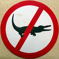 Ne krokodilu.jpg
