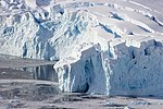 Neko Harbour Glacier Antarctica 3 4 (40371723123).jpg