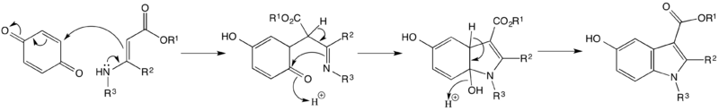Mechanism for the Nentizescu Indole Synthesis