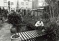 Nieuwe Gracht 96. Prof. dr. B.D. Bangma in zijn tuin. Aangekocht van United Photos de Boer bv. - Negatiefnummer 33158 k 8. - Gepubliceerd in het Haarlems Dagblad van 18.10.1990.JPG