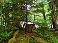 North Cascades National Park (9292784642).jpg
