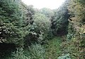 North Cornwall Railway looking towards Trelill Tunnel, Cornwall.jpg