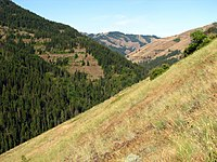 North Fork Umatilla Wilderness.jpg
