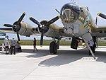 Nose & wing P7260016.jpg