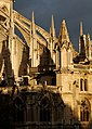 Notre-Dame et Quais (4471374135).jpg