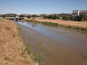 Novato Creek - Novato Creek in summer 2016