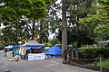 Occupy Eugene 1.jpg