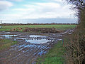 Off West Marsh Lane - geograph.org.uk - 314207.jpg