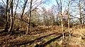 Okolí Rokytky u Hostavic - panoramio (15).jpg