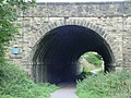 Old Railway Tunnel - geograph.org.uk - 54659.jpg