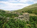 Old Sheep Stell in Harthope Valley - geograph.org.uk - 209274.jpg