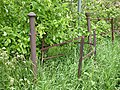 Old fence - geograph.org.uk - 228100.jpg