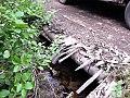 Old wooden bridge needs repair (5878630531).jpg