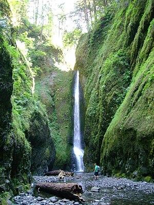 Oneonta Gorge - Image: Oneonta gorge