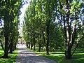 Oslo Botanical Garden - IMG 8985.jpg