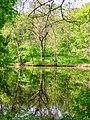 Osnovyntsi, Kharkiv Oblast, Ukraine, 62002 - panoramio (1).jpg