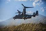 Osprey takes to the skies of Fuji 151012-M-RZ020-007.jpg