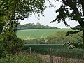 Over Comber Dale - geograph.org.uk - 813501.jpg