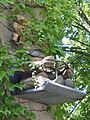 PS122Lenk-Brunnen.jpg