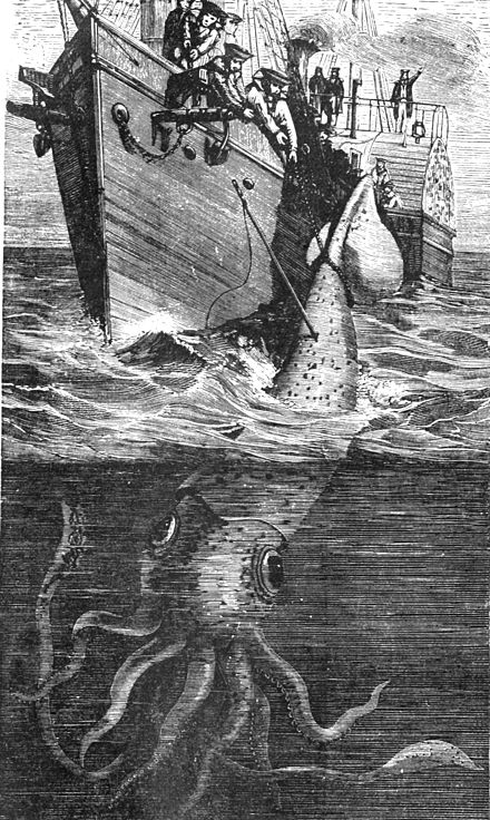 PSM V35 D674 Capture of a giant squid.jpg