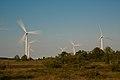 Pakri wind farm - Pakri tuulepark (4780278989).jpg