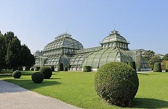 Palmenhaus Schönbrunn - The Palmenhaus Schönbrunn