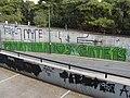 Panathinaikos FC Gate 13 Graffiti.jpg