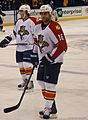 Panthers vs Blues-8414 (6448850691).jpg