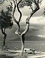 Paolo Monti - Serie fotografica - BEIC 6346758.jpg
