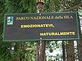 Parco della Sila - panoramio.jpg
