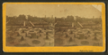 Park at St. Louis, from Robert N. Dennis collection of stereoscopic views.png