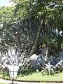Parque del Este 2012 040.JPG