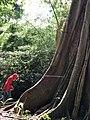 Part of nature.jpg