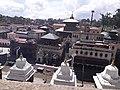 Pashupatinath Temple 20170707 142510.jpg