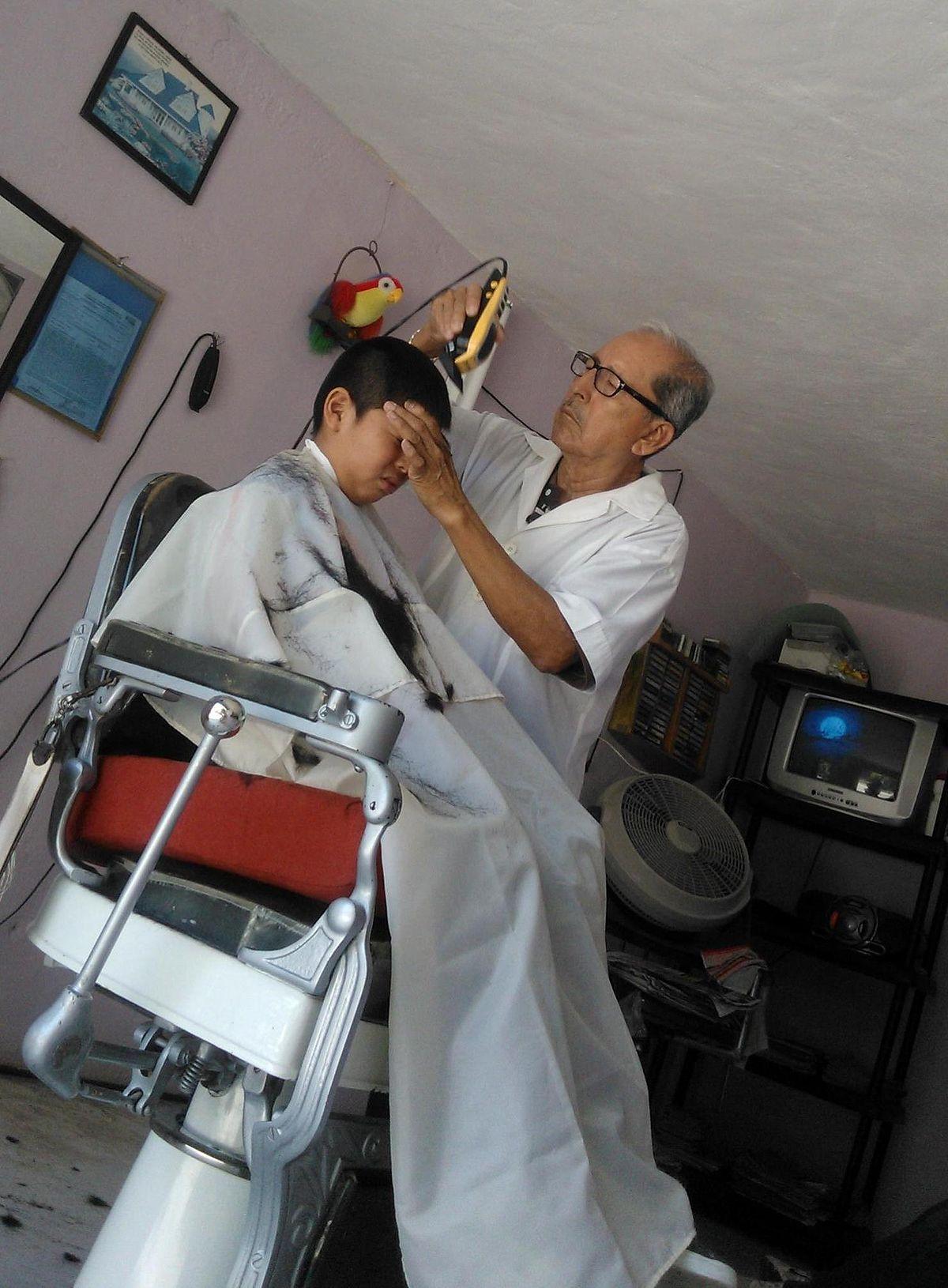 para estudiar peluqueria gratis