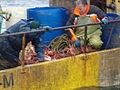 Pesca de centolla en la Bahía Ushuaia 27.JPG