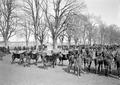 Pferde auf dem Schatzungsplatz - CH-BAR - 3238252.tif