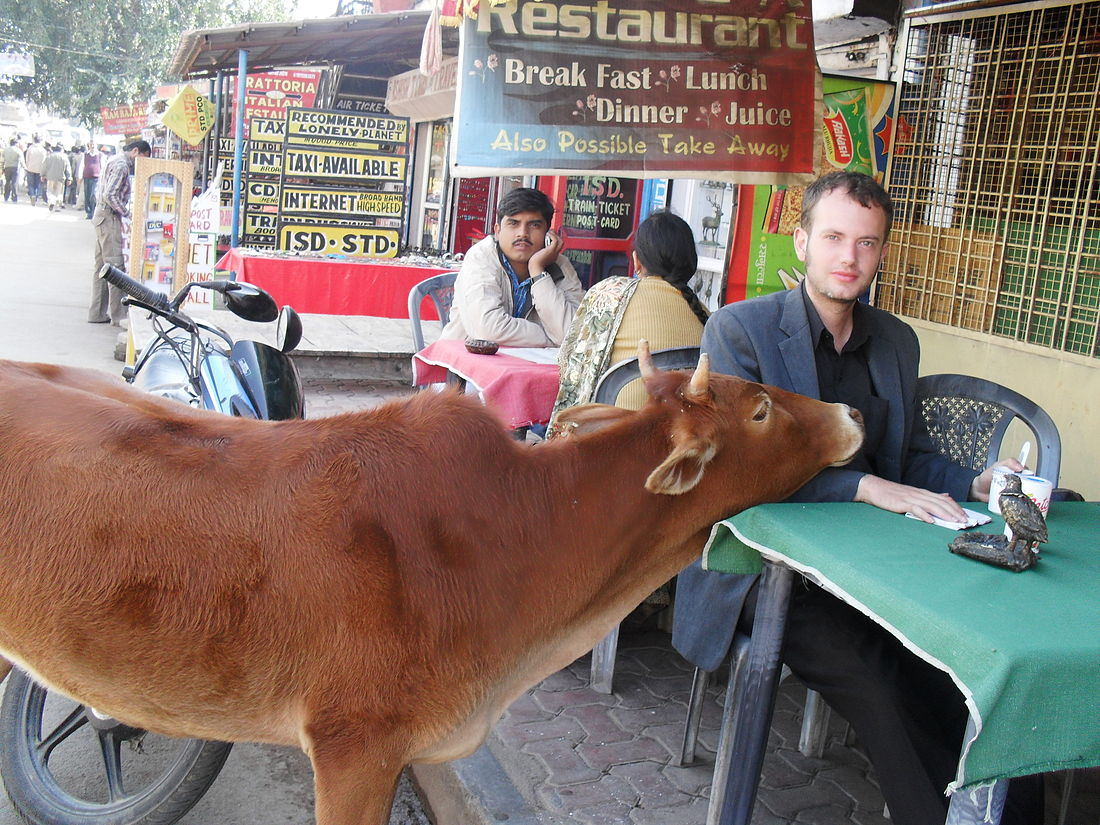 Me with a cow