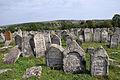 Pidhaitsi Jewish Cemetery RB.jpg