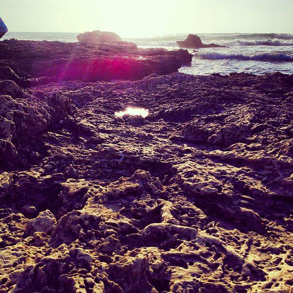 שמורת הטבע בחוף ינאי